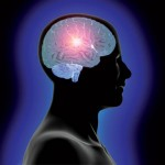 addiction-recovery-and-the-brain